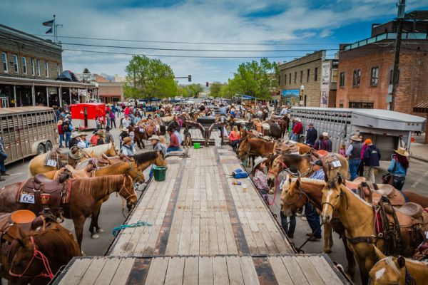 Highway Signs For Sale >> Cody Horse Sale, Downtown Cody Wyoming, Events in Cody